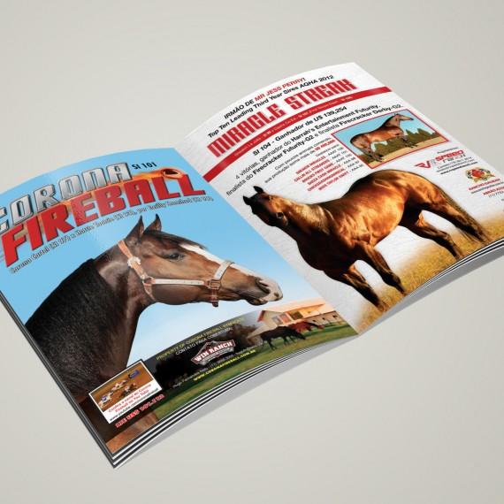 anuncio revista