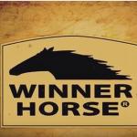 Winner Horse – O cuidado que vem de gerações