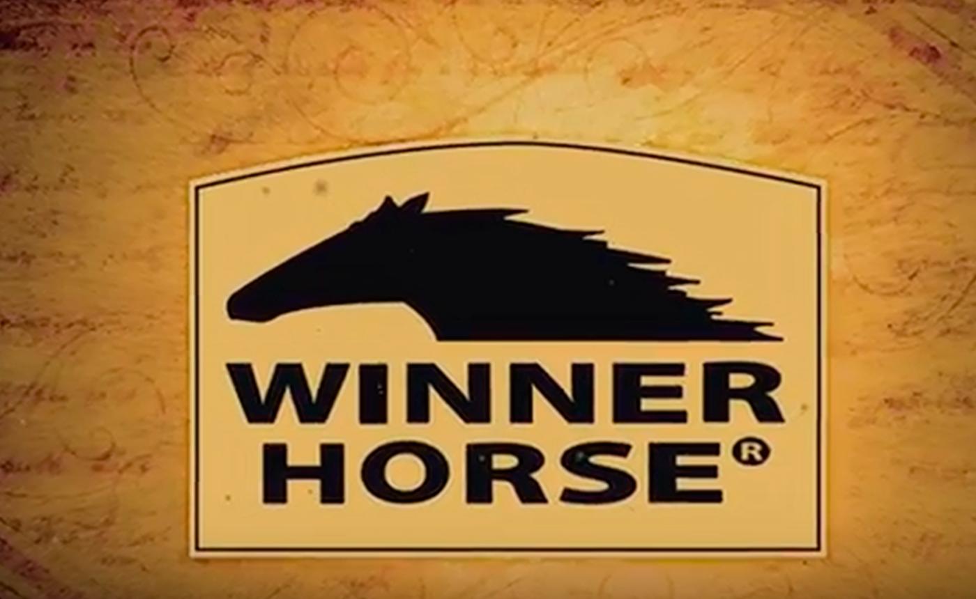 Winner-Horse